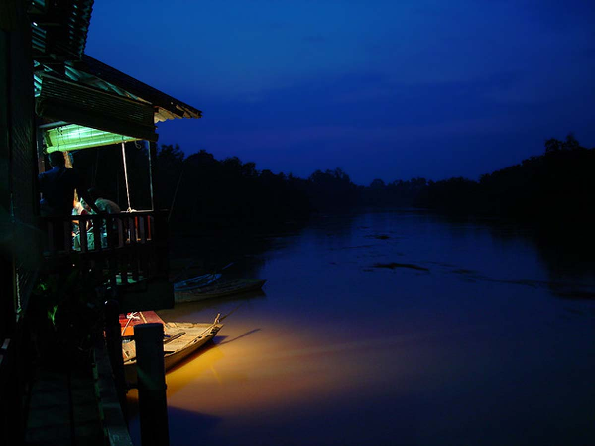 Le lucciole di Kampung Kuantan