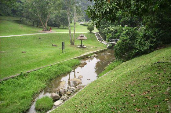 Giardino botanico di Penang