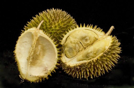 Il durian, questo sconosciuto