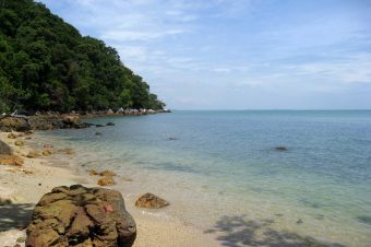 Una gita nella riserva forestale di Tanjung Tuan