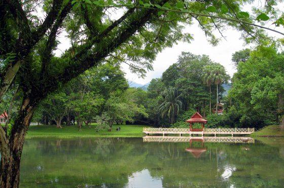 Un giro a Taiping