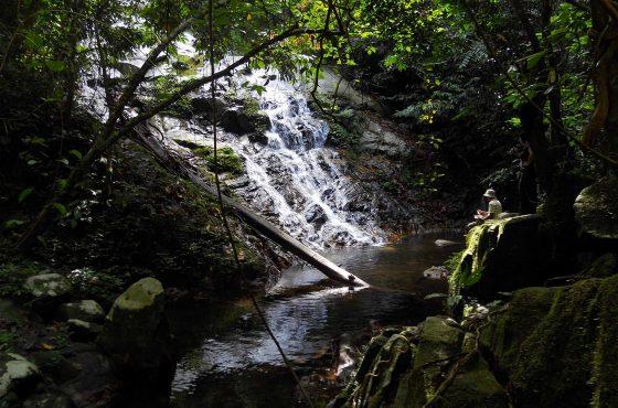 Parco Nazionale Belum Temenggor