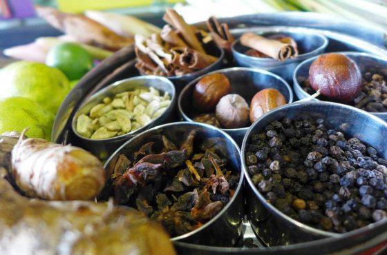 Giardino delle spezie tropicali di Penang