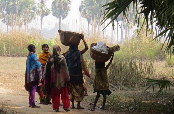 Viaggio a Bodhgaya, India Settentrionale