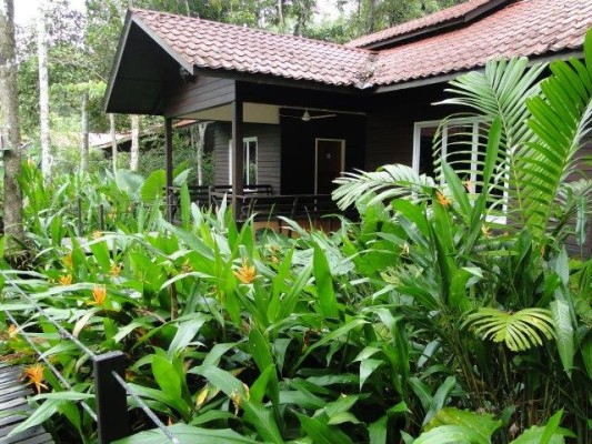 Eco Lodge Kinabatangan