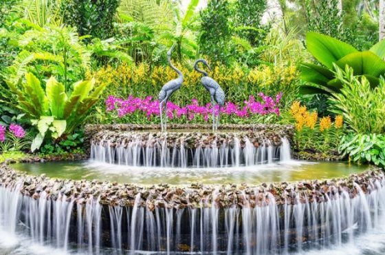 Giardini botanici di Singapore