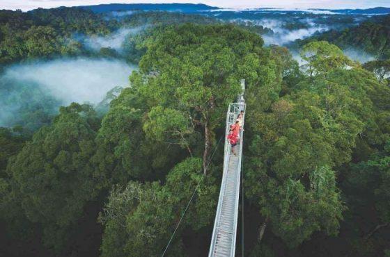 Parco nazionale Ulu temburong