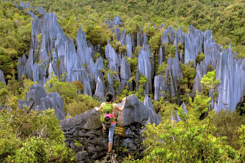 Il parco nazionale di Mulu