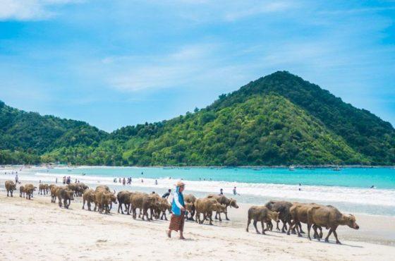 Spiaggia di Selong belanak