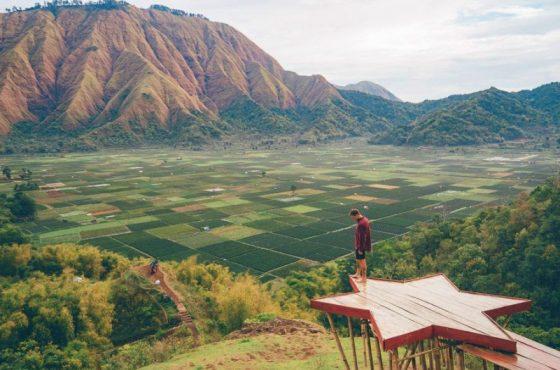 Le risaie di Bukit Selong